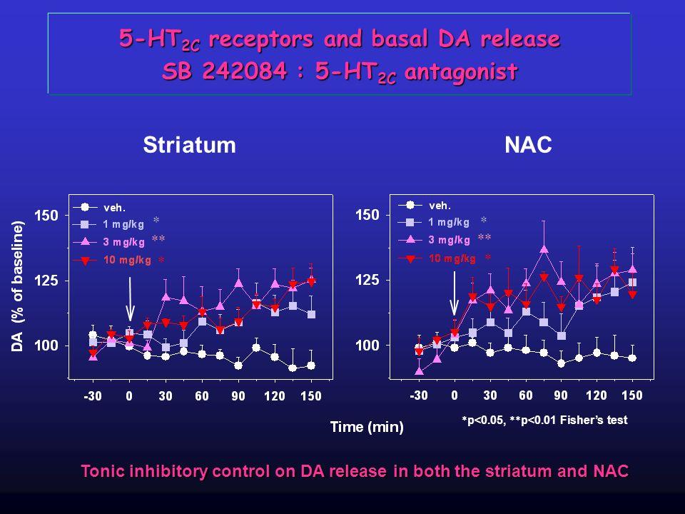 5-HT 2C receptors and basal DA release SB 242084 : 5-HT 2C antagonist StriatumNAC * * * * ** Tonic inhibitory control on DA release in both the striat