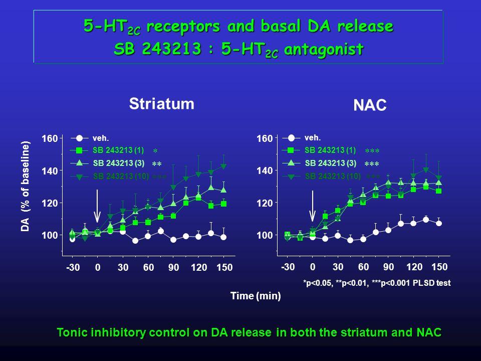 Striatum NAC *p<0.05, **p<0.01, ***p<0.001 PLSD test Time (min) DA (% of baseline) 5-HT 2C receptors and basal DA release SB 243213 : 5-HT 2C antagoni