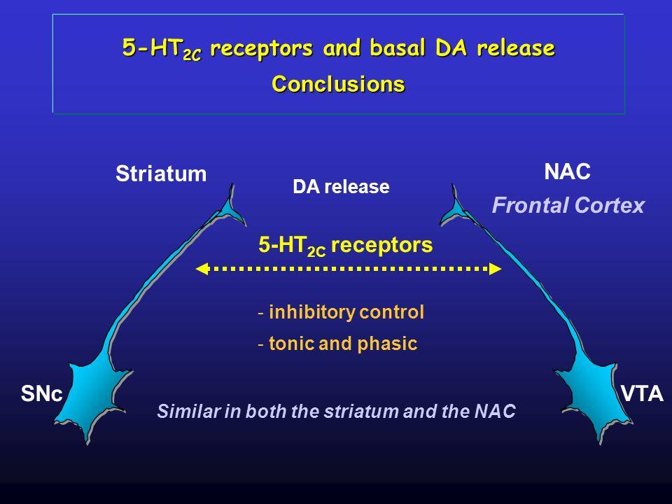 SNc Striatum VTA NAC Frontal Cortex 5-HT 2C receptors Similar in both the striatum and the NAC - inhibitory control - tonic and phasic 5-HT 2C recepto