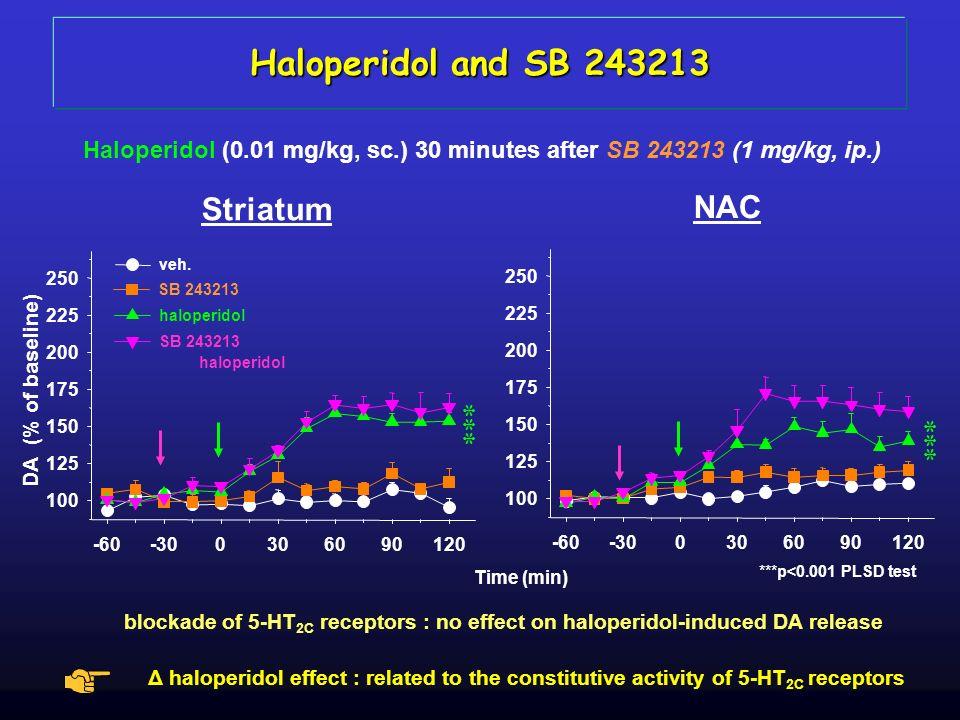 NAC Striatum Haloperidol (0.01 mg/kg, sc.) 30 minutes after SB 243213 (1 mg/kg, ip.) ***p<0.001 PLSD test Haloperidol and SB 243213 blockade of 5-HT 2