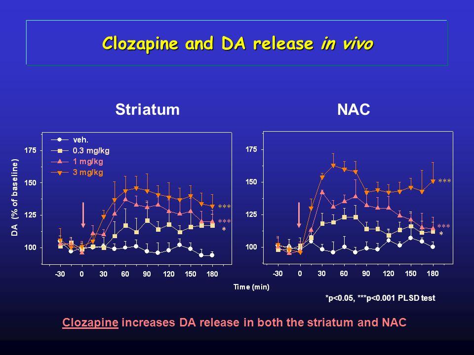 Striatum NAC *** * * *p<0.05, ***p<0.001 PLSD test Clozapine increases DA release in both the striatum and NAC Clozapine and DA release in vivo