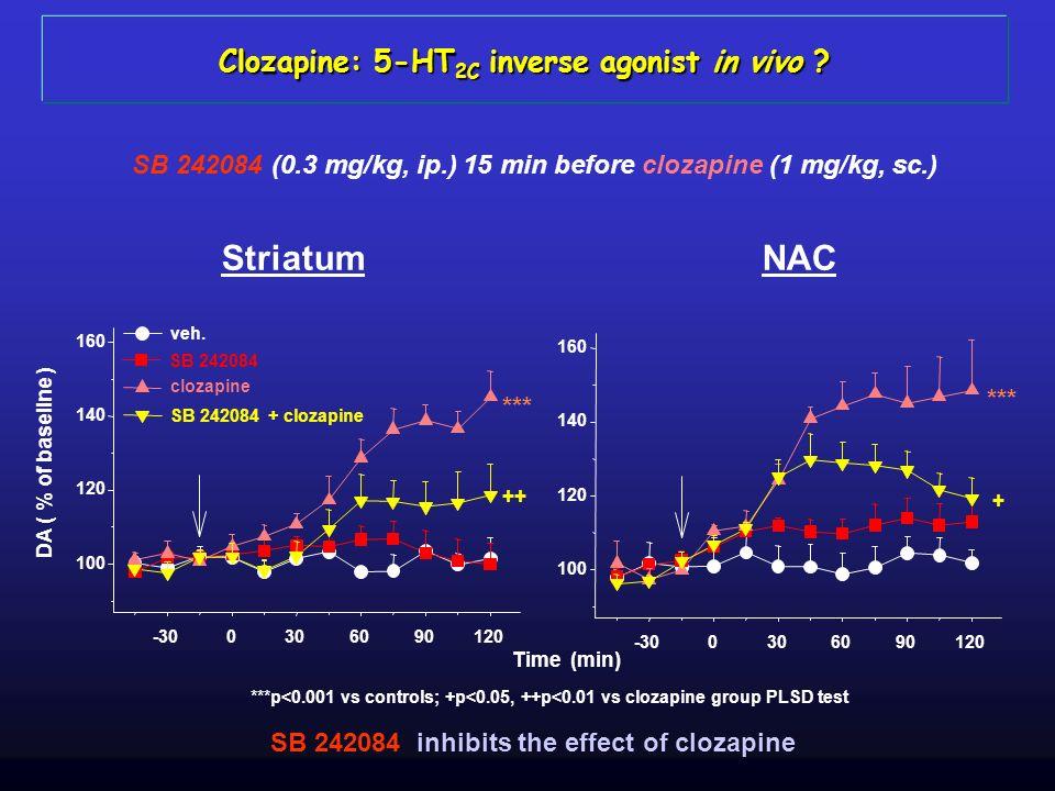 Clozapine: 5-HT 2C inverse agonist in vivo ? NACStriatum SB 242084 (0.3 mg/kg, ip.) 15 min before clozapine (1 mg/kg, sc.) SB 242084 inhibits the effe