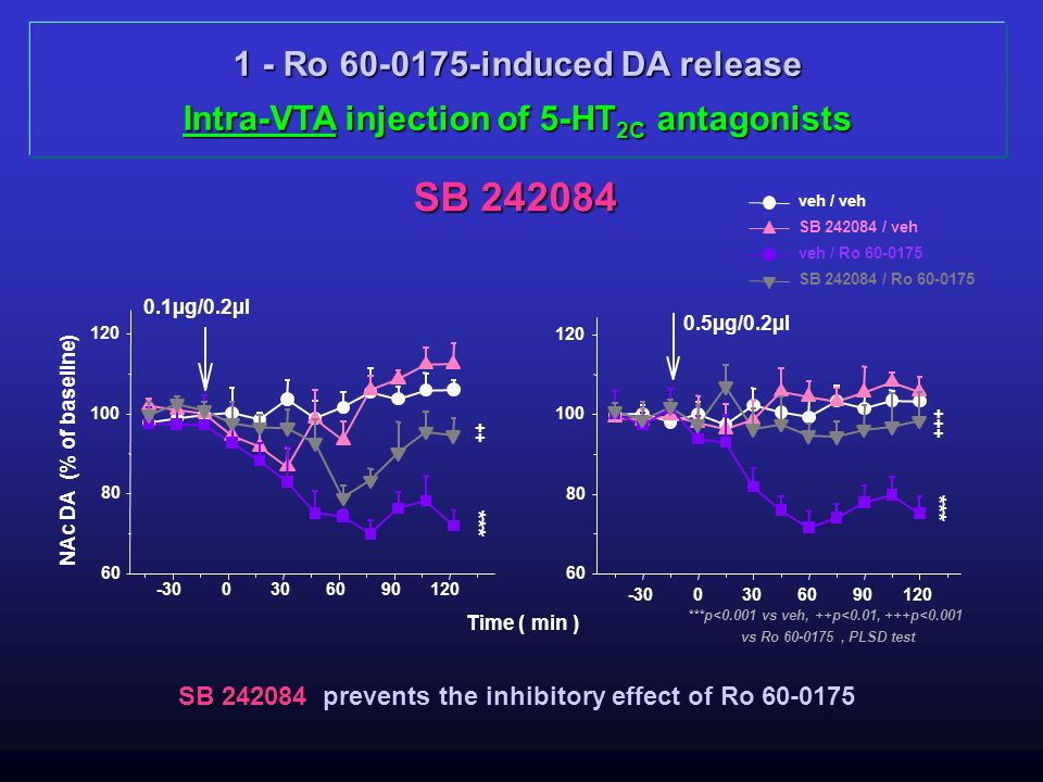 1 - Ro 60-0175-induced DA release Intra-VTA injection of 5-HT 2C antagonists SB 242084 Time ( min ) SB 242084 SB 242084 prevents the inhibitory effect