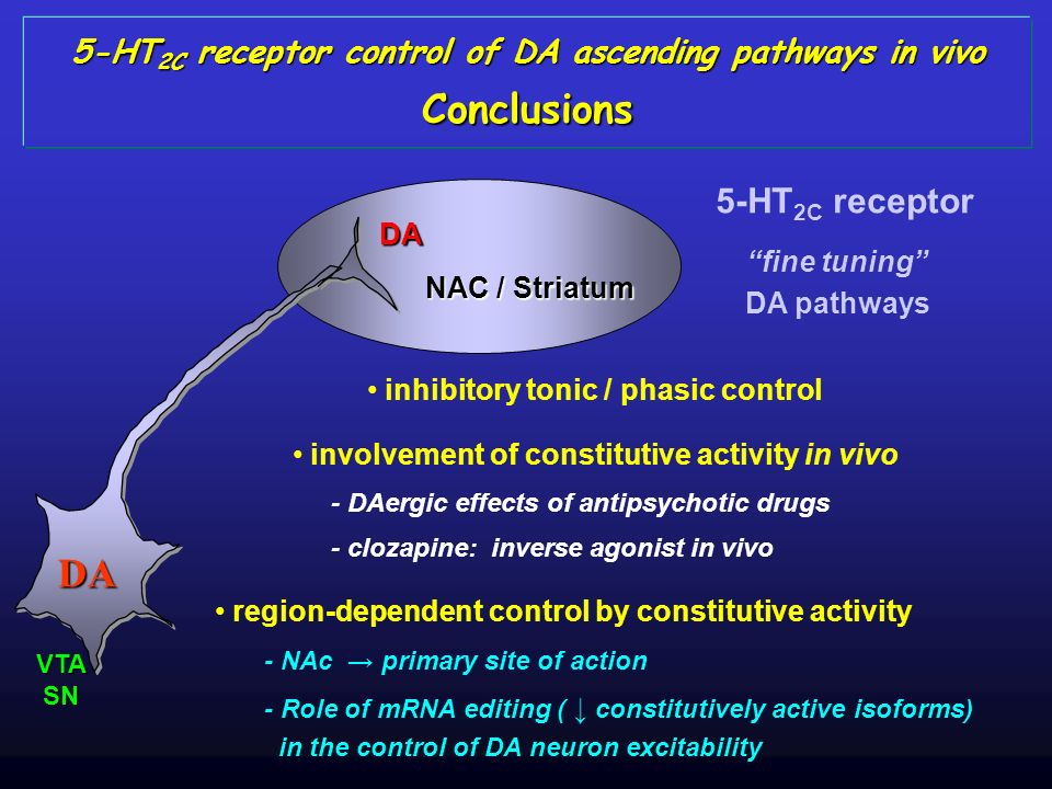 DA NAC / Striatum DA VTASN 5-HT 2C receptor control of DA ascending pathways in vivo Conclusions inhibitory tonic / phasic control involvement of cons
