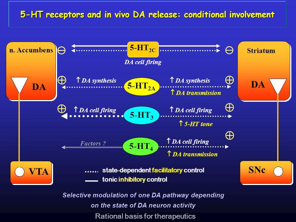 Striatum SNc DA n. Accumbens VTA 5-HT 2A DA synthesis DA transmission 5-HT tone DA cell firing 5-HT 3 state-dependent facilitatory control tonic inhib