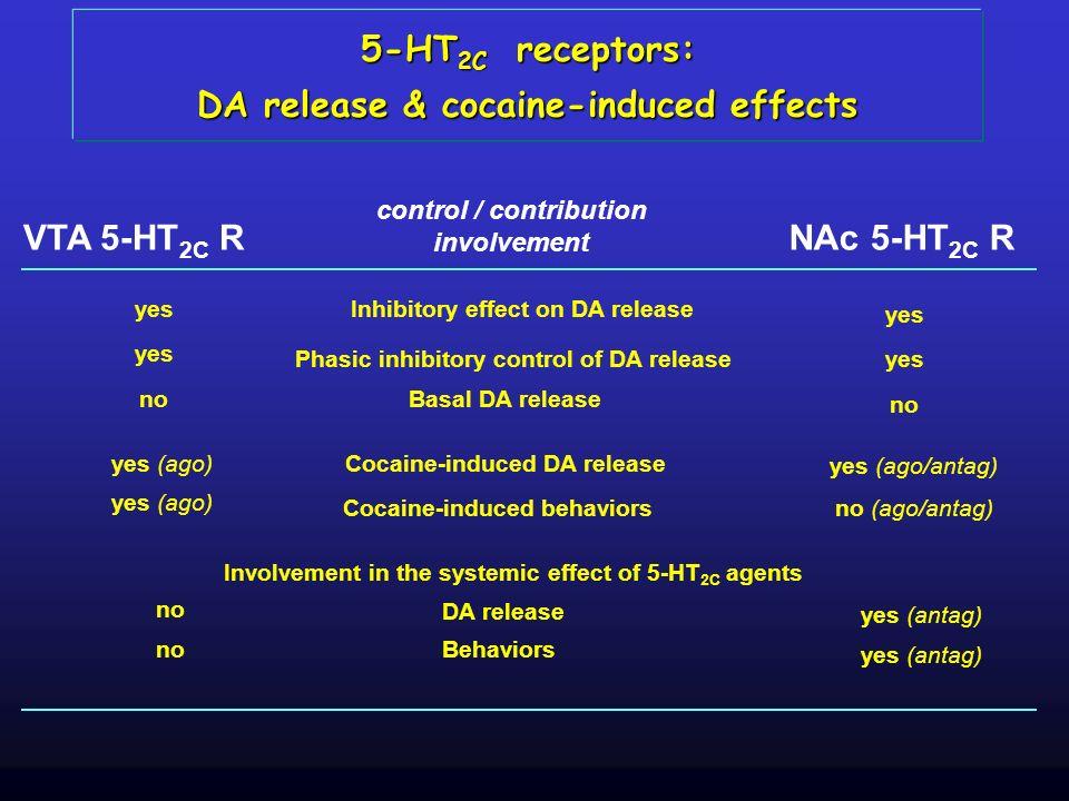 5-HT 2C receptors: DA release & cocaine-induced effects control / contribution involvement VTA 5-HT 2C RNAc 5-HT 2C R Inhibitory effect on DA release