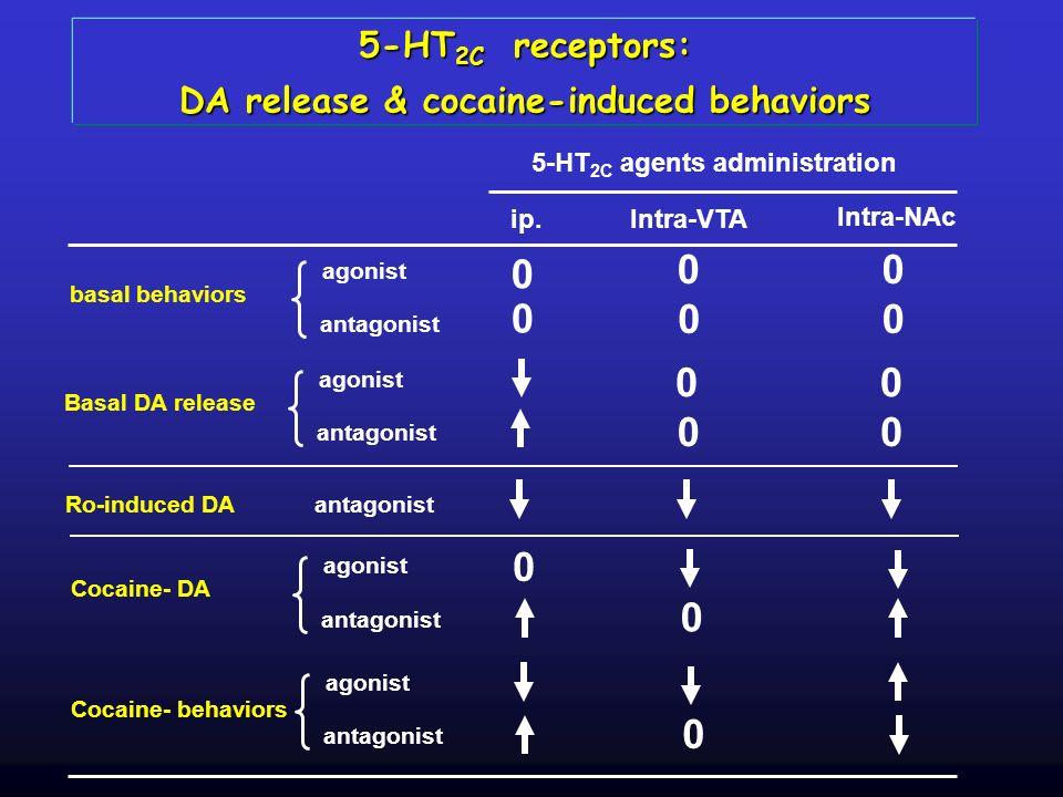 5-HT 2C receptors: DA release & cocaine-induced behaviors ip.Intra-VTA Intra-NAc 5-HT 2C agents administration Ro-induced DAantagonist agonist antagon