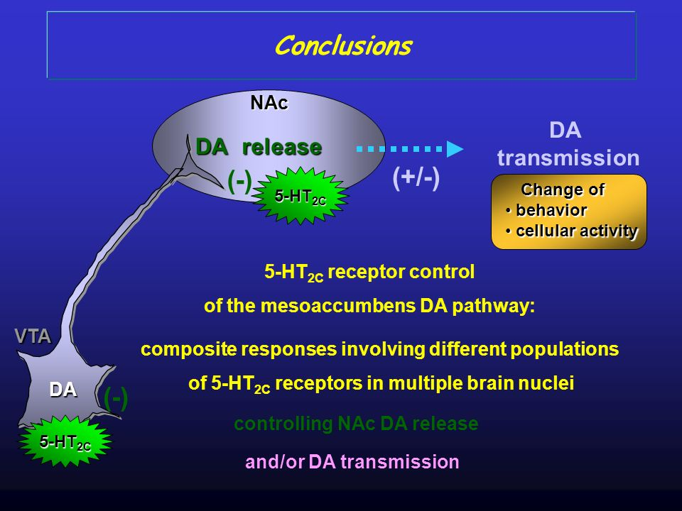 VTA NAc 5-HT 2C DA Conclusions 5-HT 2C receptor control of the mesoaccumbens DA pathway: controlling NAc DA release DA DA transmission (+/-) Change of