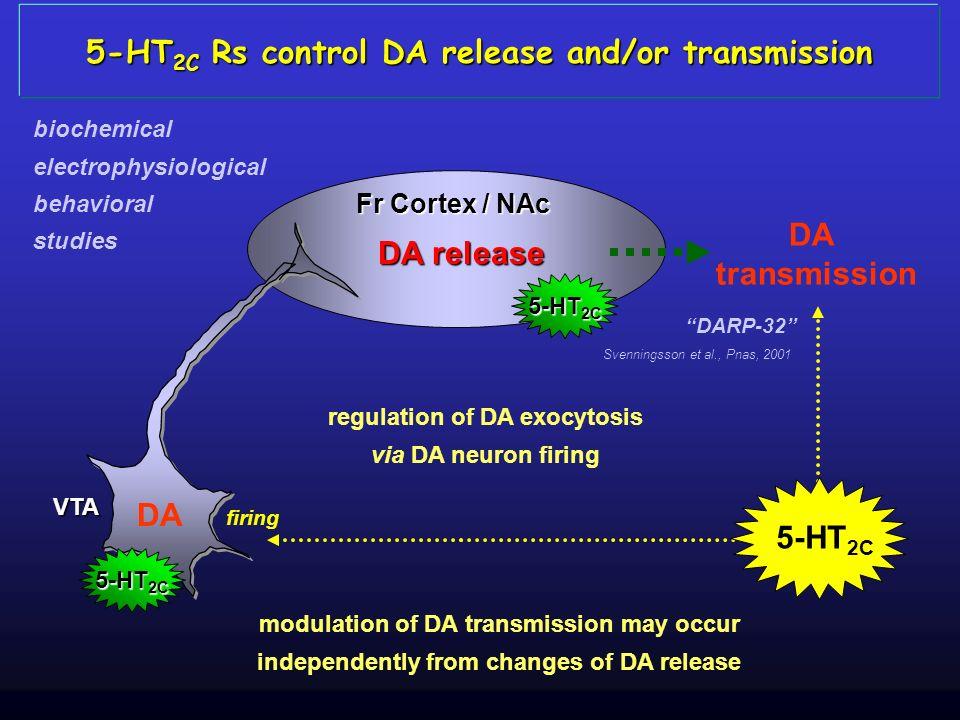5-HT 2C Rs control DA release and/or transmission DA release DA VTA transmission firing regulation of DA exocytosis via DA neuron firing modulation of