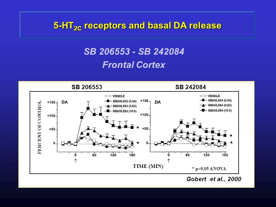 5-HT 2C receptors and basal DA release SB 206553 - SB 242084 Frontal Cortex Gobert et al., 2000 TIME (MIN) PERCENT OF CONTROL * p<0.05 ANOVA SB 206553