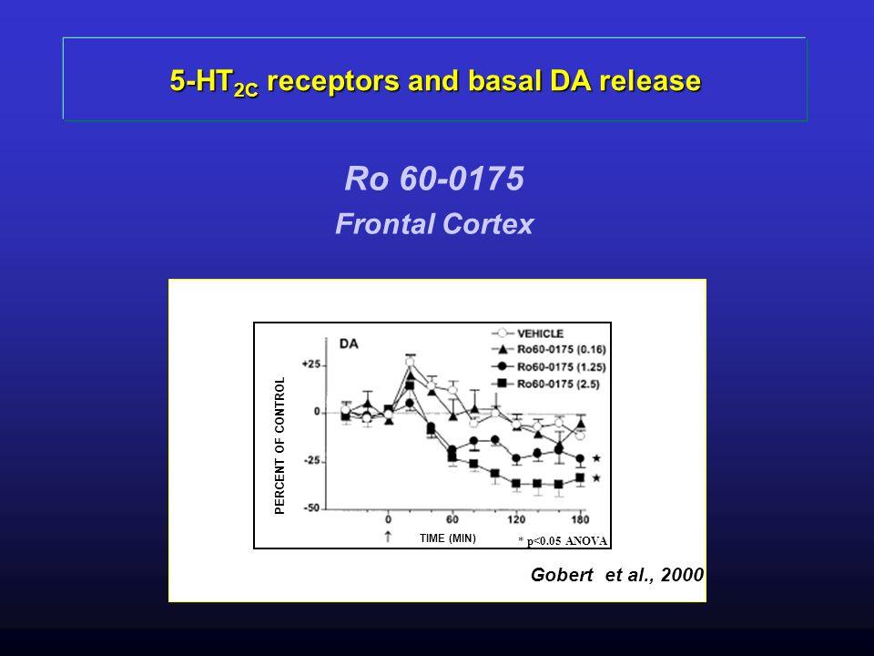 5-HT 2C receptors and basal DA release Ro 60-0175 Frontal Cortex TIME (MIN) PERCENT OF CONTROL Gobert et al., 2000 * p<0.05 ANOVA