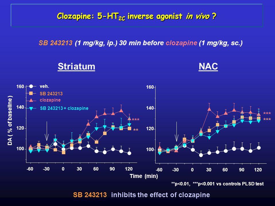Clozapine: 5-HT 2C inverse agonist in vivo ? NACStriatum SB 243213 (1 mg/kg, ip.) 30 min before clozapine (1 mg/kg, sc.) SB 243213 inhibits the effect