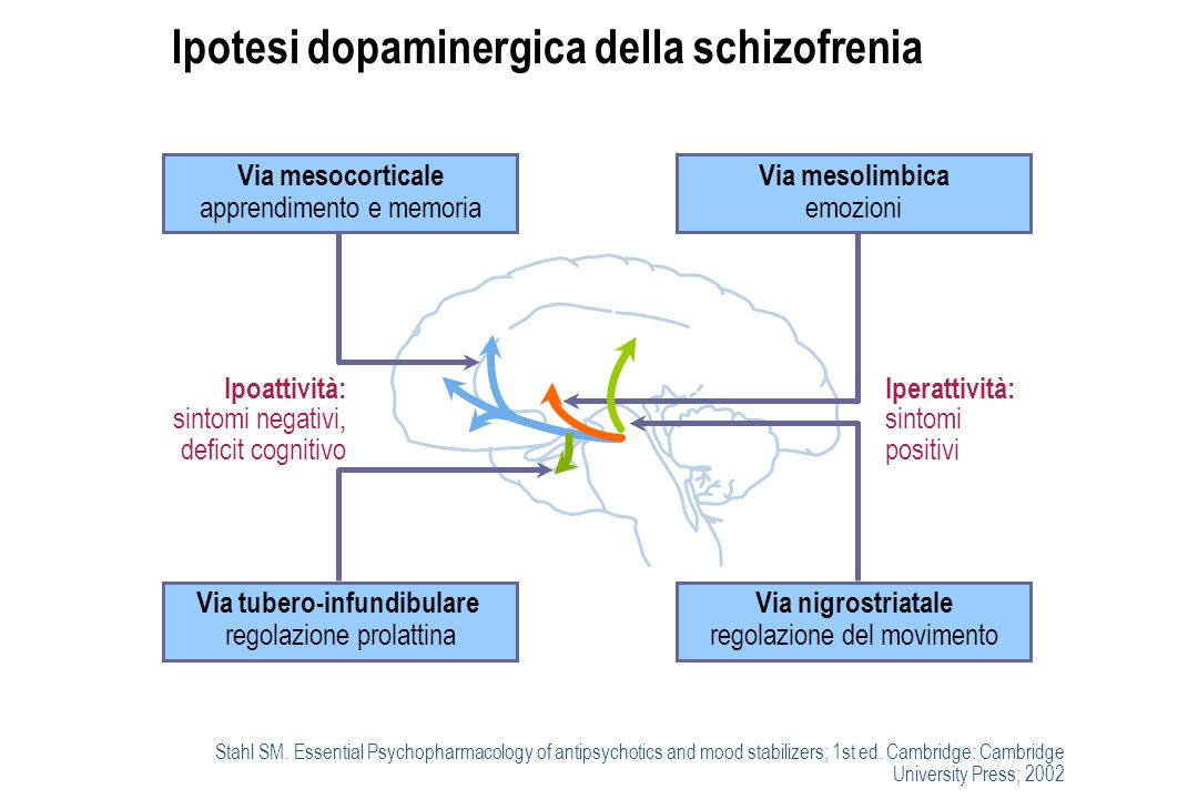 Ipotesi dopaminergica della schizofrenia Stahl SM.