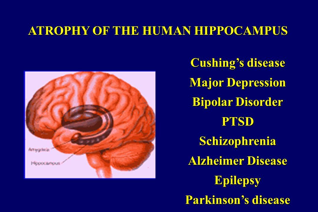 ATROPHY OF THE HUMAN HIPPOCAMPUS Cushings disease Major Depression Bipolar Disorder PTSDSchizophrenia Alzheimer Disease Epilepsy Parkinsons disease