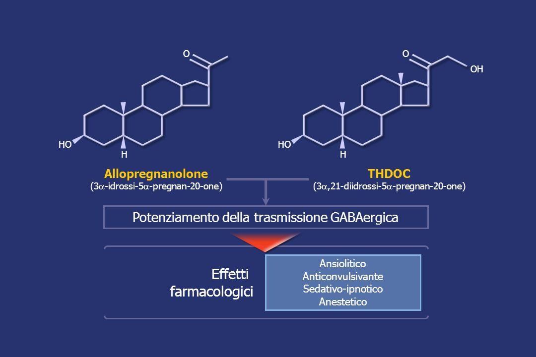 Allopregnanolone (3 -idrossi-5 -pregnan-20-one) THDOC (3,21-diidrossi-5 -pregnan-20-one) Potenziamento della trasmissione GABAergica Effetti farmacologici Ansiolitico Anticonvulsivante Sedativo-ipnotico Anestetico HO H O OH HO H O