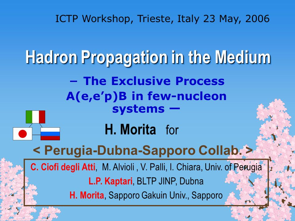 Hadron Propagation in the Medium ICTP Workshop, Trieste, Italy 23 May, 2006 The Exclusive Process A(e,ep)B in few-nucleon systems H. Morita for C. Cio
