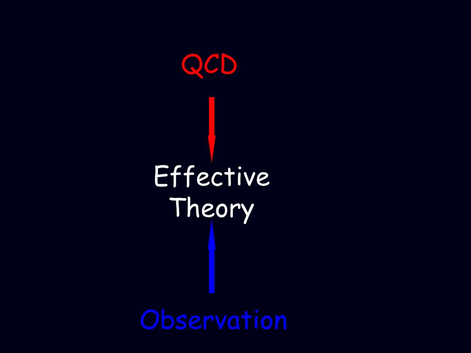 Effective Theory QCD Observation