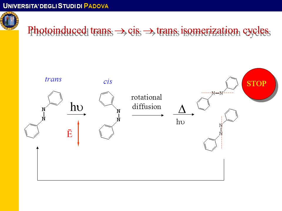U NIVERSITA DEGLI S TUDI DI P ADOVA Photoinduced trans cis trans isomerization cycles Ē rotational diffusion h h STOP trans cis