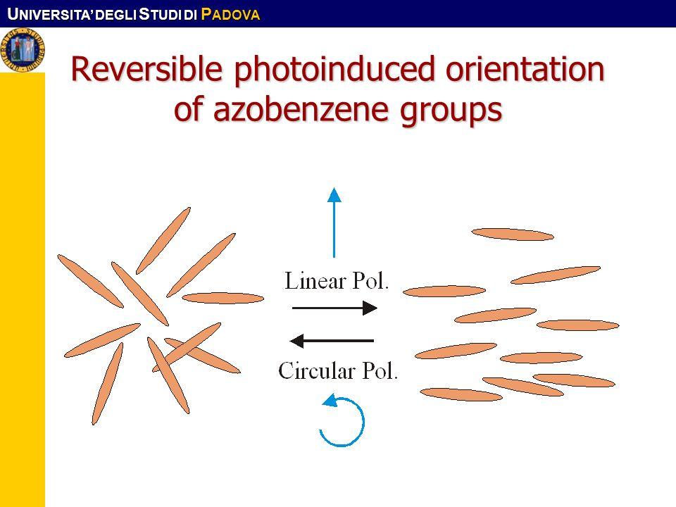 U NIVERSITA DEGLI S TUDI DI P ADOVA Reversible photoinduced orientation of azobenzene groups