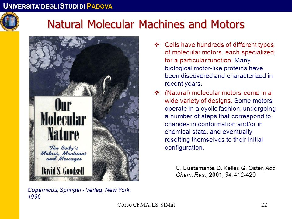 U NIVERSITA DEGLI S TUDI DI P ADOVA Corso CFMA. LS-SIMat22 Natural Molecular Machines and Motors Cells have hundreds of different types of molecular m