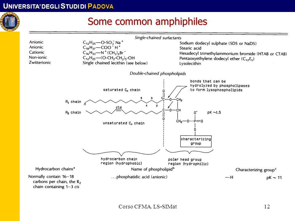 U NIVERSITA DEGLI S TUDI DI P ADOVA Corso CFMA. LS-SIMat12 Some common amphiphiles