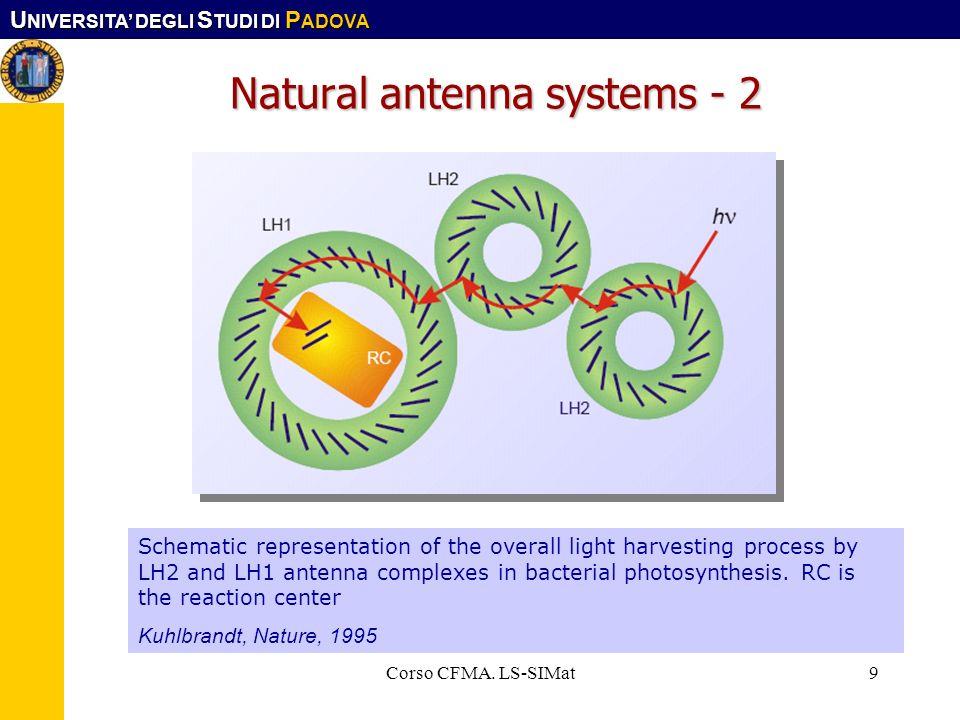 U NIVERSITA DEGLI S TUDI DI P ADOVA Corso CFMA. LS-SIMat9 Natural antenna systems - 2 Schematic representation of the overall light harvesting process