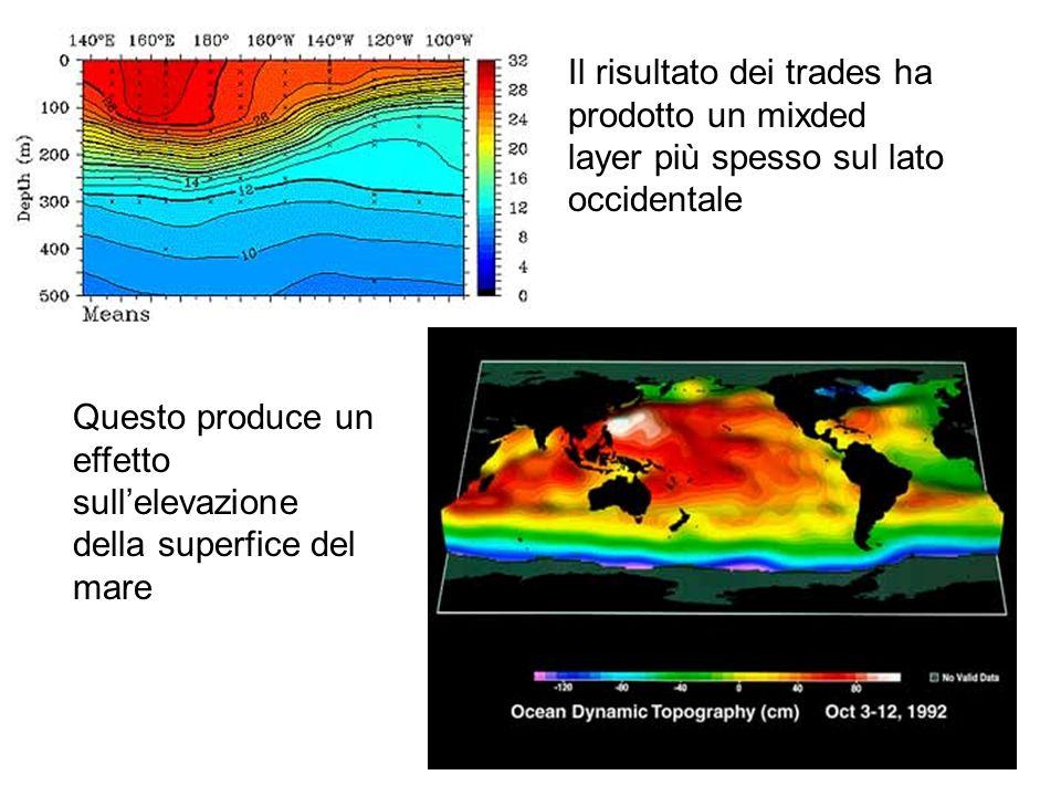 Il risultato dei trades ha prodotto un mixded layer più spesso sul lato occidentale Questo produce un effetto sullelevazione della superfice del mare