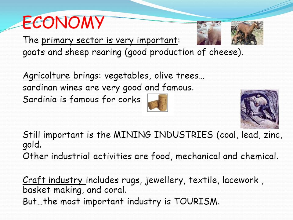 ECONOMY The primary sector is very important: goats and sheep rearing (good production of cheese).