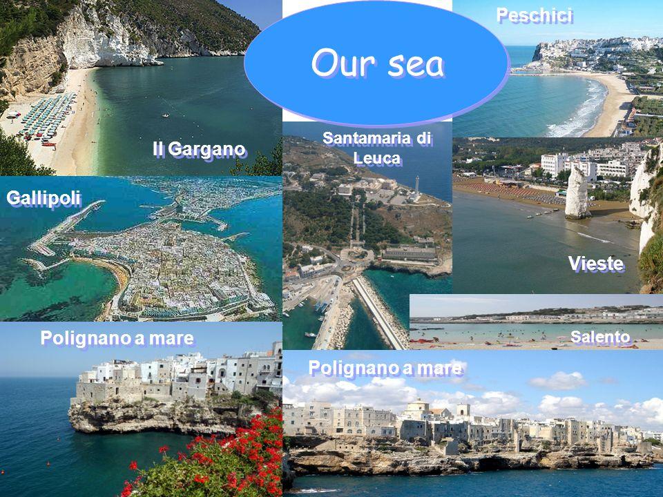 Gallipoli Polignano a mare Santamaria di Leuca Peschici Vieste Polignano a mare Salento Il Gargano Our sea