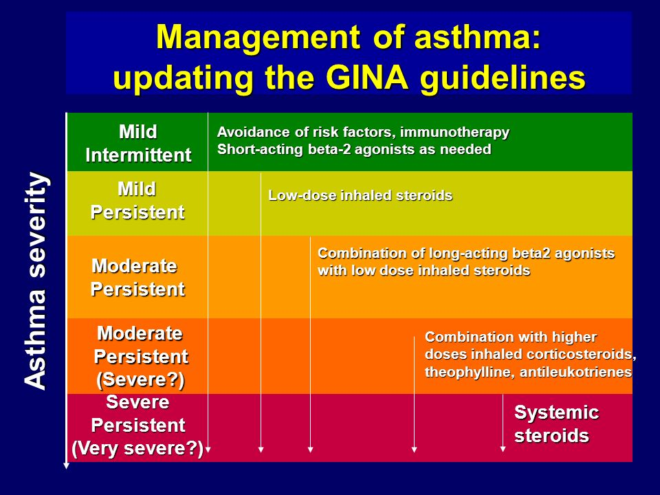 Management of asthma: updating the GINA guidelines Systemic steroids Asthma severity MildIntermittent MildPersistent ModeratePersistent ModeratePersistent(Severe ) SeverePersistent (Very severe ) Combination with higher doses inhaled corticosteroids, theophylline, antileukotrienes Avoidance of risk factors, immunotherapy Short-acting beta-2 agonists as needed Low-dose inhaled steroids Combination of long-acting beta2 agonists with low dose inhaled steroids