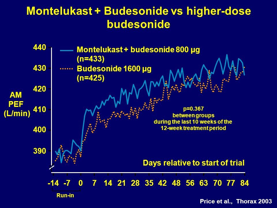 Montelukast + Budesonide vs higher-dose budesonide Days relative to start of trial Montelukast + budesonide 800 µg (n=433) Budesonide 1600 µg (n=425) AM PEF (L/min) 440 390 400 410 420 430 -14-7071421283542485663707784 p=0.367 between groups during the last 10 weeks of the 12-week treatment period Run-in Price et al., Thorax 2003