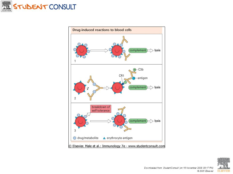 Downloaded from: StudentConsult (on 19 November 2008 09:17 PM) © 2005 Elsevier