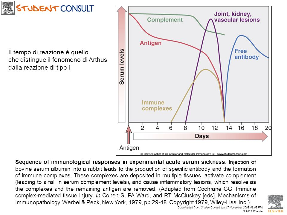 Sequence of immunological responses in experimental acute serum sickness. Injection of bovine serum albumin into a rabbit leads to the production of s
