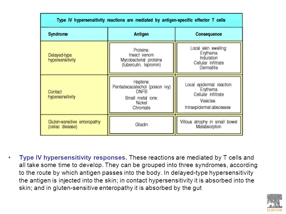 Type IV hypersensitivity responses. These reactions are mediated by T cells and all take some time to develop. They can be grouped into three syndrome