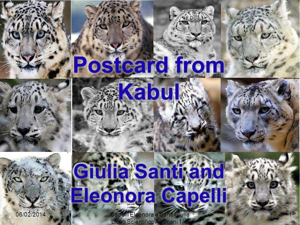 06/02/20141Capelli Eleonora e Santi Giulia Liceo Scientifico A. Oriani 1°C