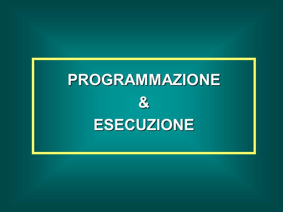PROGRAMMAZIONE&ESECUZIONE