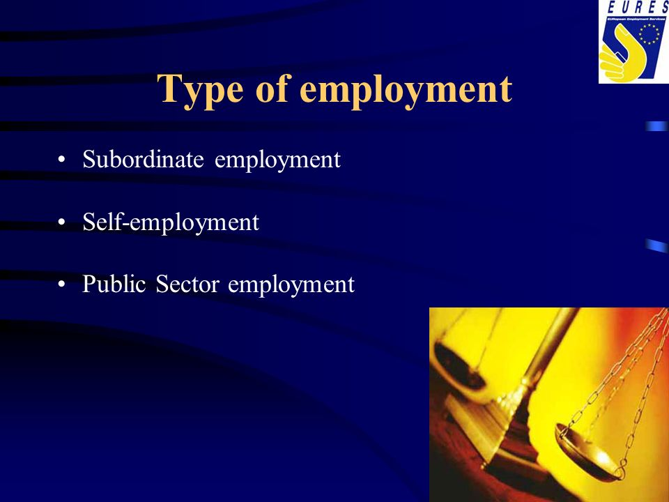 Type of employment Subordinate employment Self-employment Public Sector employment