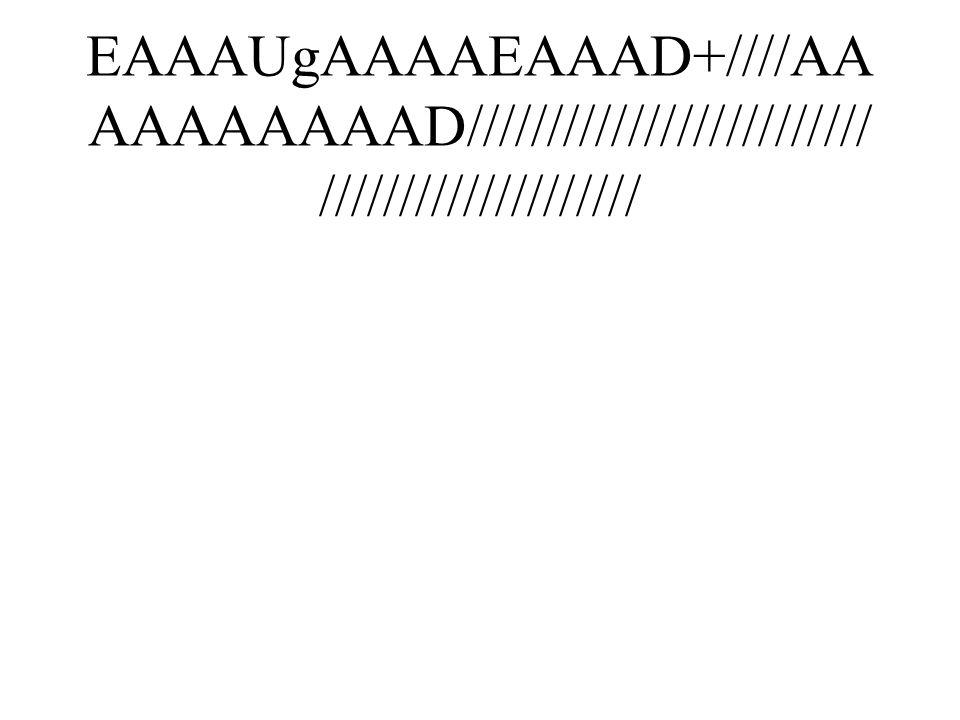 EAAAUgAAAAEAAAD+////AA AAAAAAAAD///////////////////////// ////////////////////