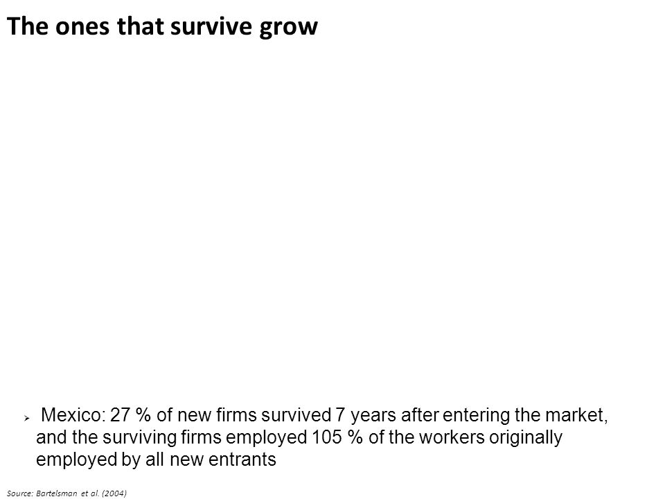 The ones that survive grow Mexico: 27 % of new firms survived 7 years after entering the market, and the surviving firms employed 105 % of the workers