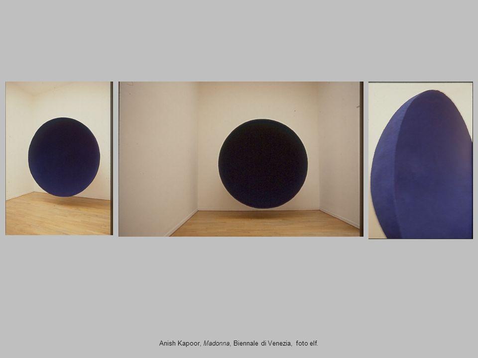 Anish Kapoor, Madonna, Biennale di Venezia, foto elf.