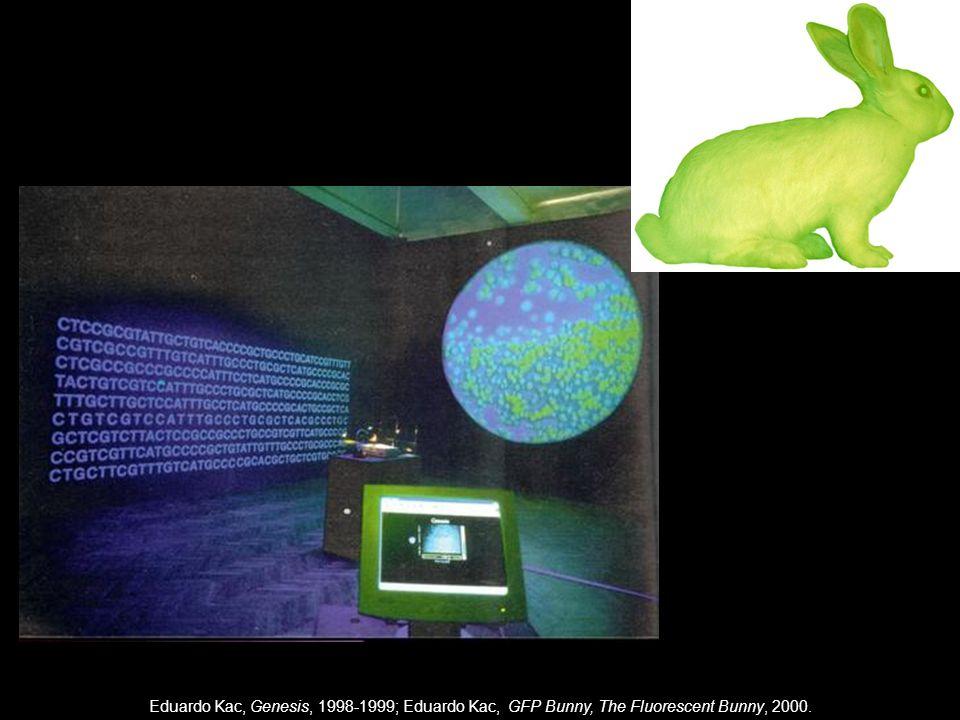 Eduardo Kac, Genesis, 1998-1999; Eduardo Kac, GFP Bunny, The Fluorescent Bunny, 2000.