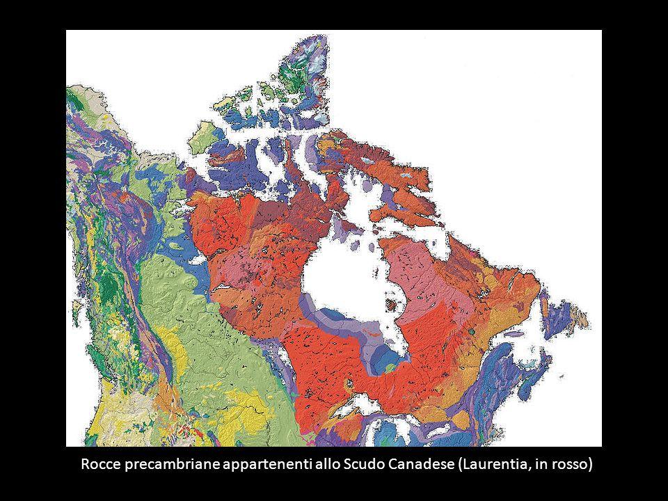 Rocce precambriane appartenenti allo Scudo Canadese (Laurentia, in rosso)