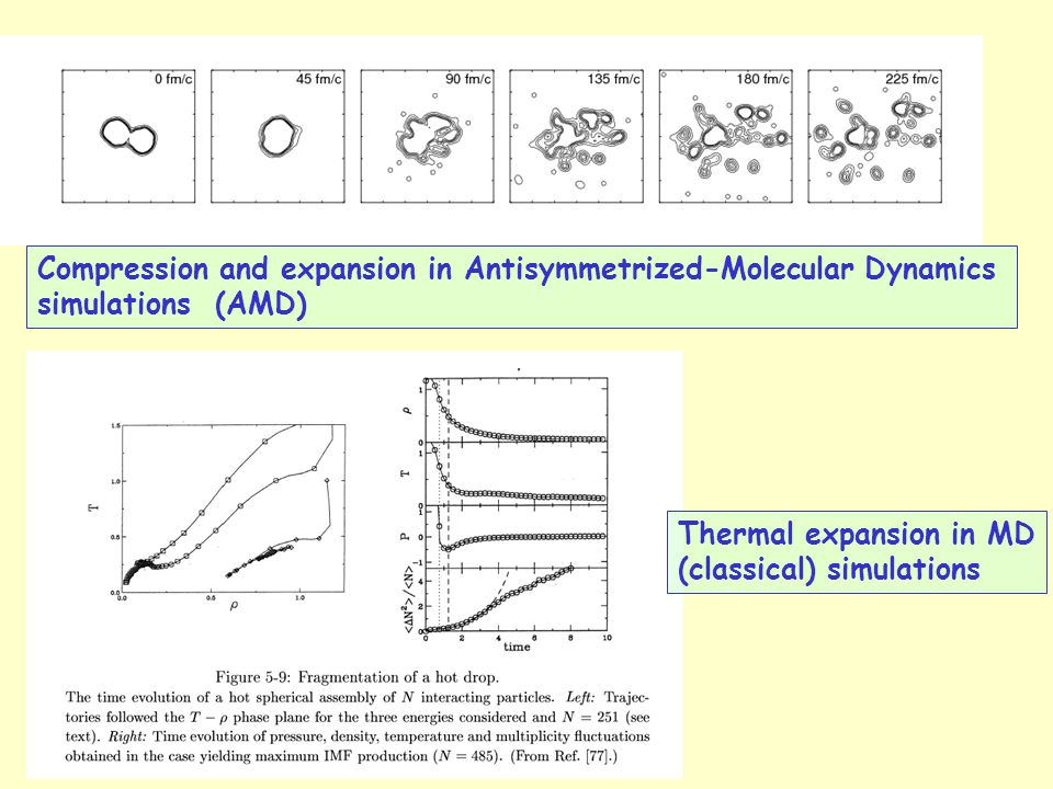 Compression and expansion in Antisymmetrized-Molecular Dynamics simulations (AMD) Thermal expansion in MD (classical) simulations