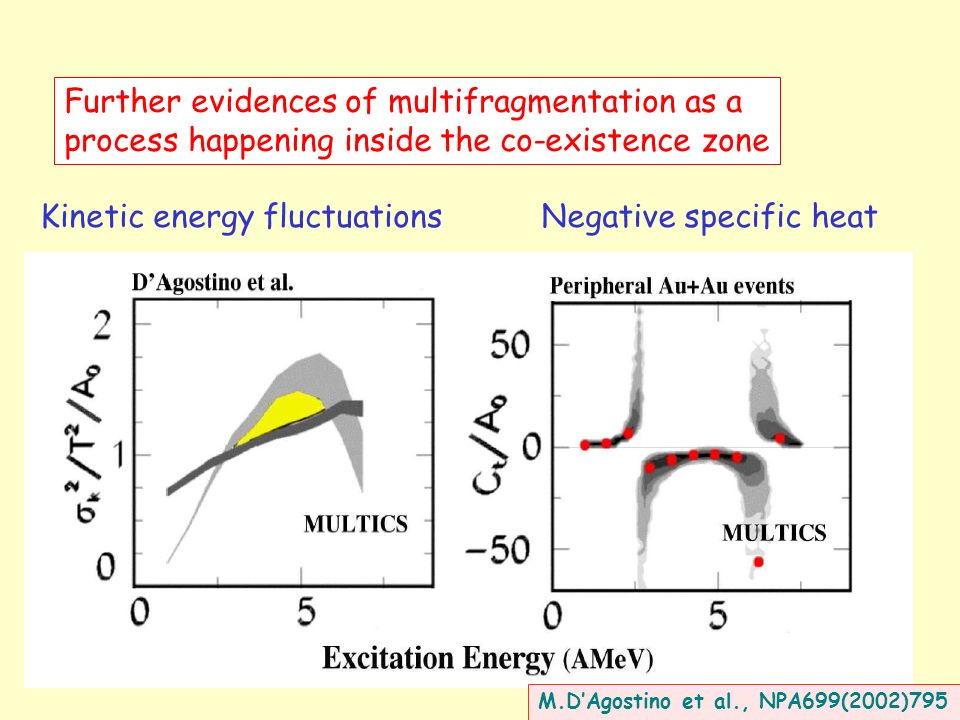 Further evidences of multifragmentation as a process happening inside the co-existence zone Kinetic energy fluctuationsNegative specific heat M.DAgostino et al., NPA699(2002)795