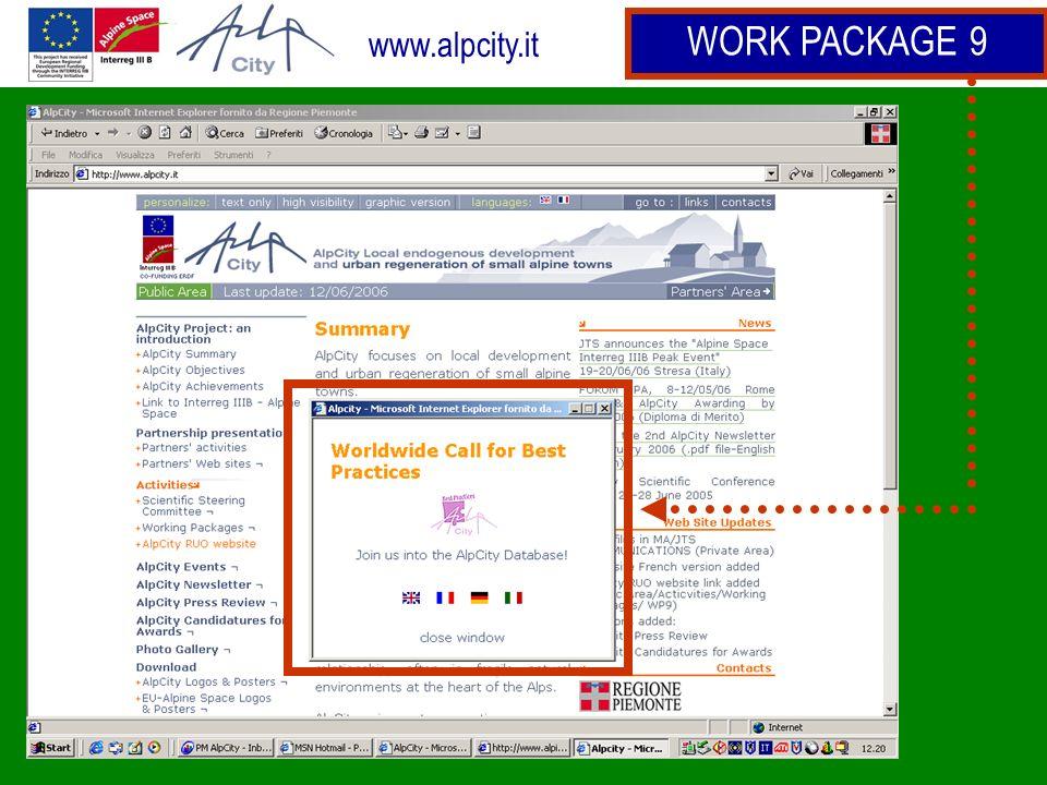 www.alpcity.it WORK PACKAGE 9