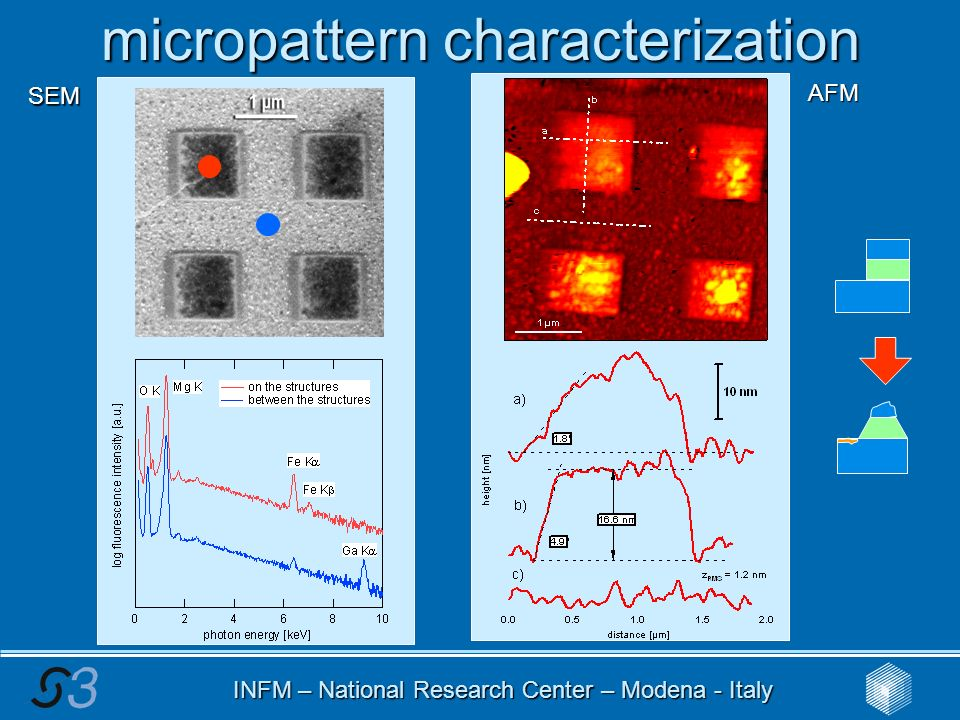 INFM – National Research Center – Modena - Italy micropattern characterization SEM AFM