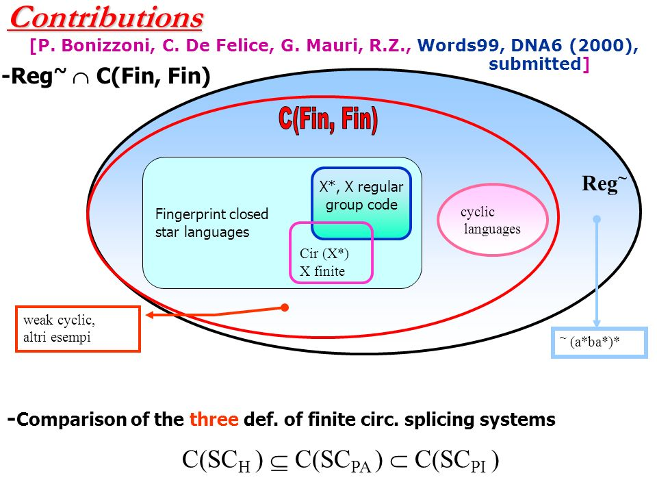 Circular finite (Paun) splicing languages and Chomsky hierarchy CS ~ CF ~ Reg ~ ~ ((aa)*b) ~ (aa)* ~ (a n b n ) I= ~ aa ~ 1, R={aa | 1 $ 1 | aa} I= ~ ab ~ 1, R={a | b $ b | a}