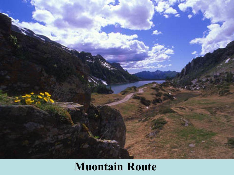 Muontain Route