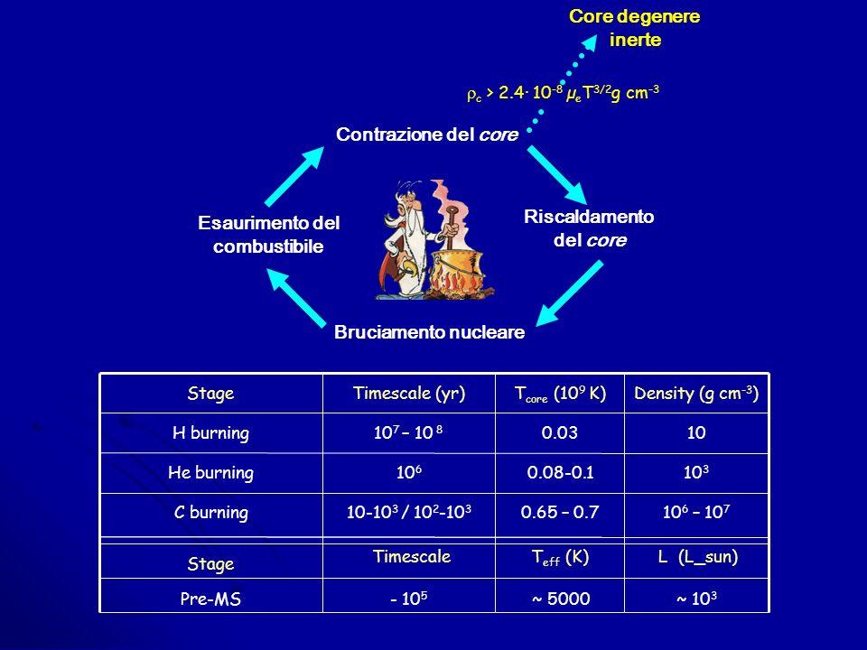 Riscaldamento del core Esaurimento del combustibile Contrazione del core Bruciamento nucleare c > 2.4· 10 -8 µ e T 3/2 g cm -3 Core degenere inerte ~ 5000 0.65 – 0.7 0.08-0.1 0.03 T core (10 9 K) Pre-MS C burning He burning H burning Stage ~ 10 3 10 6 – 10 7 10 3 10 Density (g cm -3 ) - 10 5 10-10 3 / 10 2 -10 3 10 6 10 7 – 10 8 Timescale (yr) Stage TimescaleT eff (K)L (L_sun)