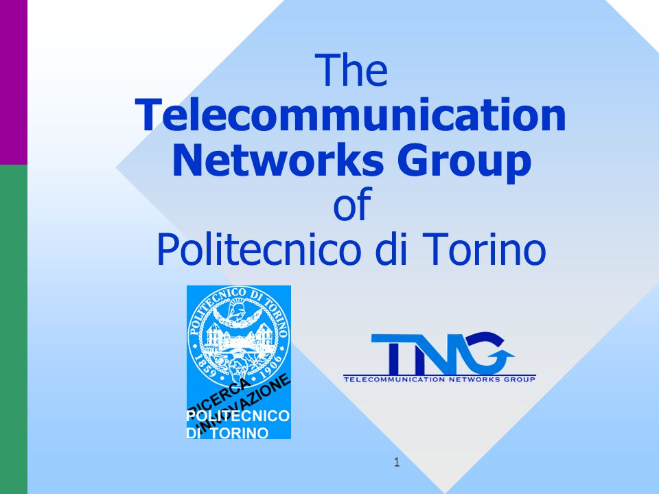 1 The Telecommunication Networks Group of Politecnico di Torino